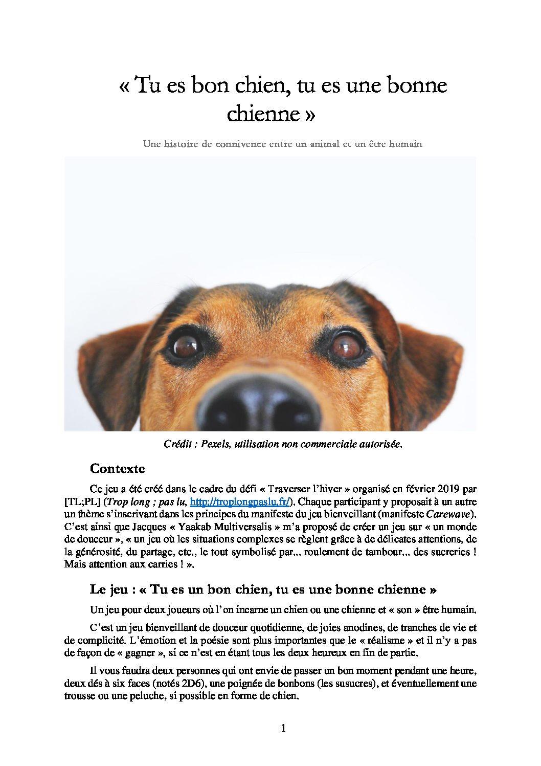 Jeu de rôle court : « Tu es un bon chien, tu es une bonne chienne » – Une histoire de connivence entre un animal et un être humain par Qui Revient De Loin
